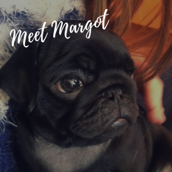 Margot the Dog